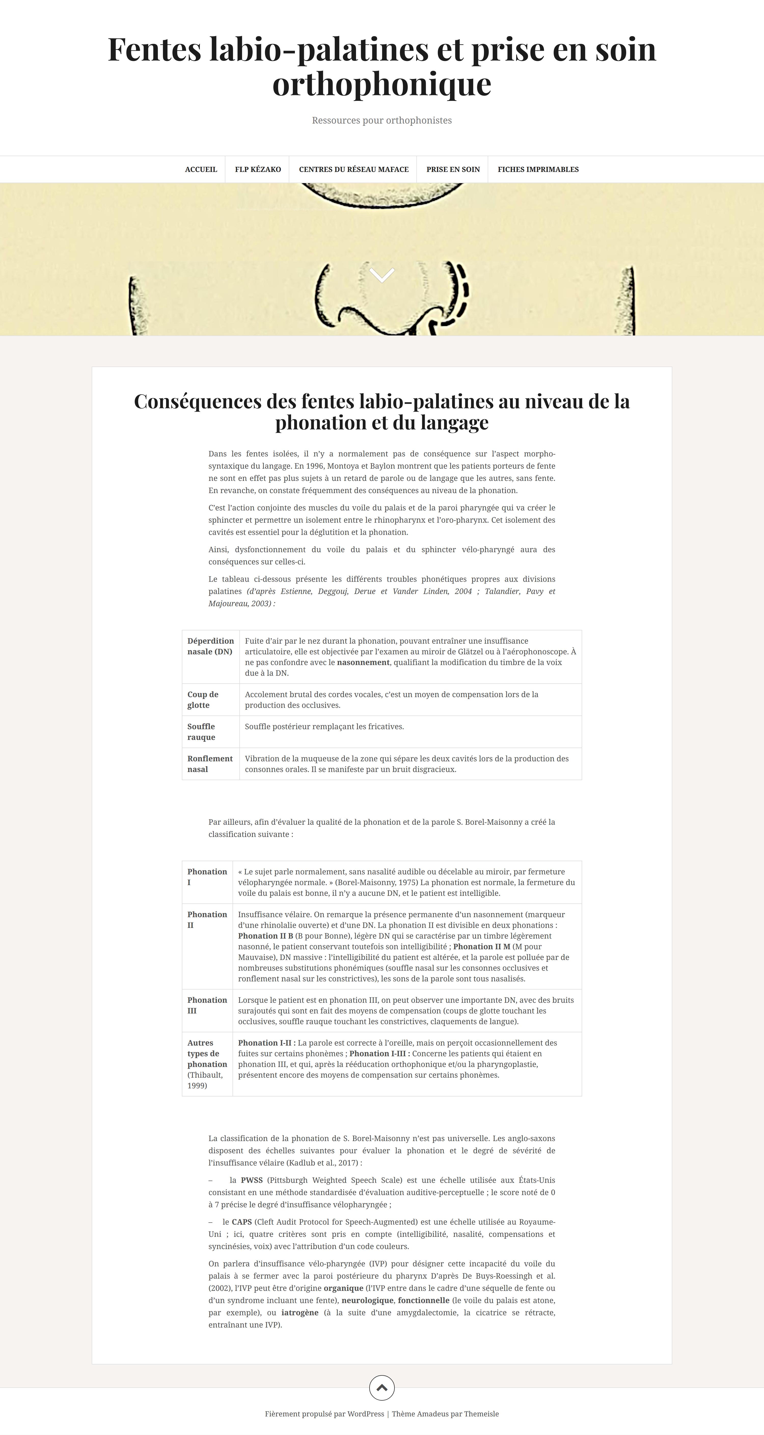 """Site Internet """"Fentes labio-palatines et prise en soin orthophonique"""""""